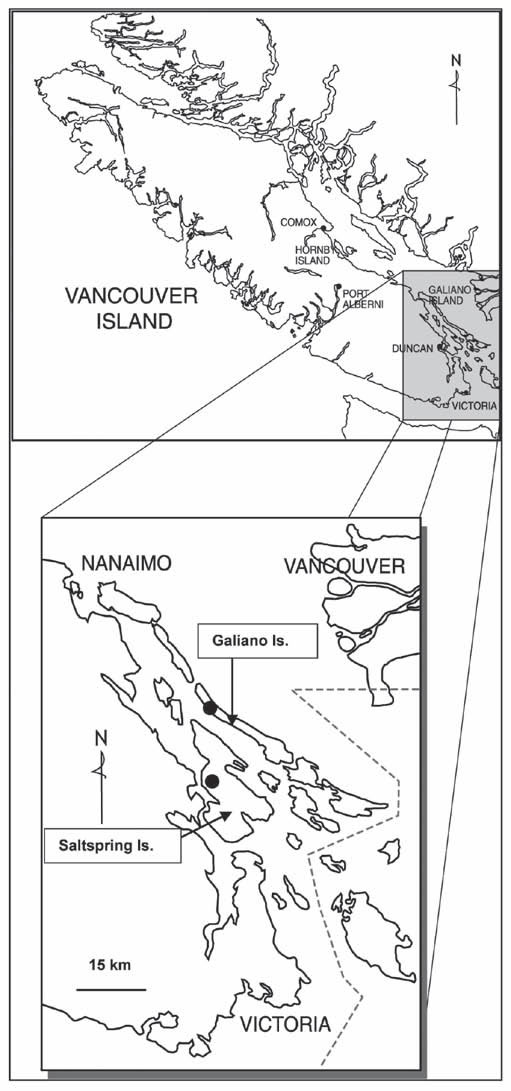 Map showing the canadian distribution of Gray's Desert-parsley, southern Vancouver Island, British Columbia