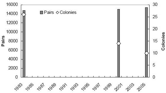 Chart showing numbers of tern pairs and tern colonies (all species combined) counted in New Brunswick between 1983 and 2006.