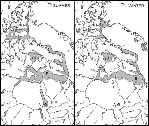 Approximate summer and winter distributions of the South and East Hudson Bay (A), Northern Hudson Bay-Davis Strait, (B), Foxe Basin (C), and Baffin Bay (High Arctic) (D) Atlantic walrus populations in Canadian waters.