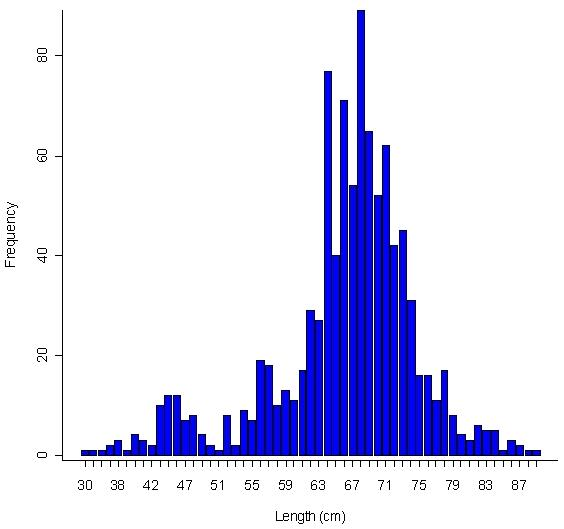 Figure 11: Cumulative length-frequency histogram of all Bocaccio lengths from the Groundfish Biological Database (GFBio).