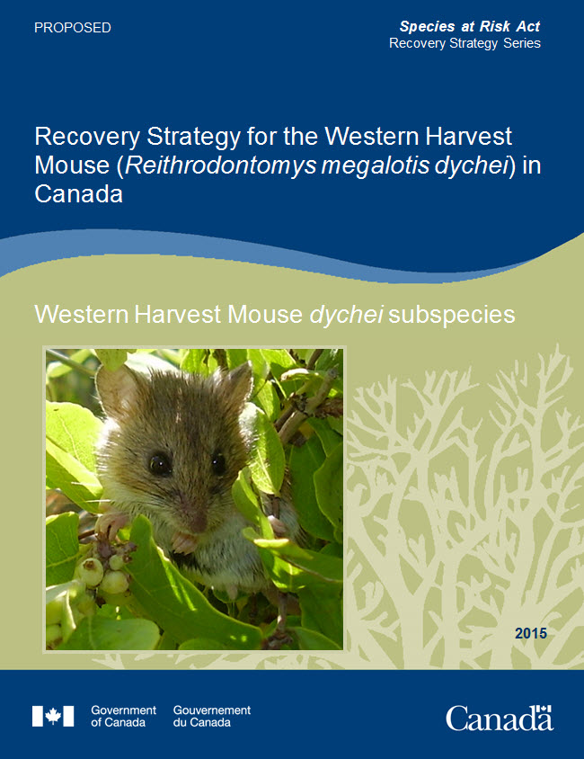 Cover Photo: Western Harvest Mouse