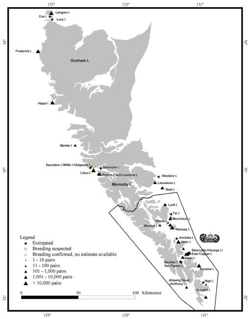 Figure 2: Locations and relative sizes of breeding colonies of Ancient Murrelets in the Queen Charlotte Islands.