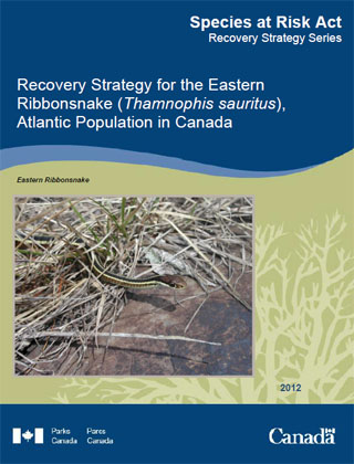 Species at Risk Act Recovery Strategy Series Recovery Strategy for the Eastern Ribbonsnake, Atlantic population in Canada.