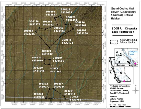Figure A2 is a map showing four areas containing critical habitat for the Osoyoos Westbench population – central.