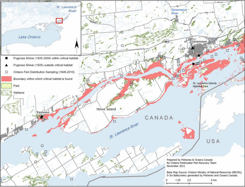 Map showing the area within which critical habitat is found for the Pugnose Shiner in the St. Lawrence River (see long description below).