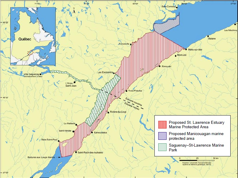Map of the Saguenay-St. Lawrence Marine Park and the two proposed marine protected areas (see long description below).