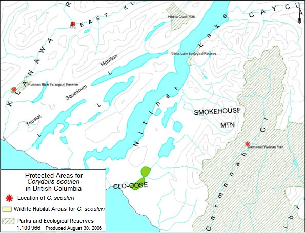 Figure 6: Protected areas for Scouler's corydalis in Klanawa River and Carmanah Creek. Site 1-196 occurs within a Wildlife Habitat Area designated for the protection of the species.