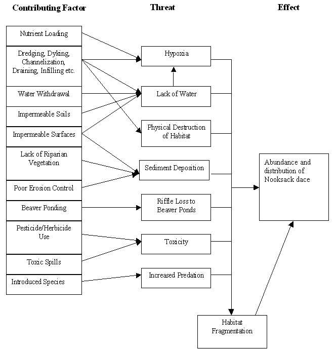Figure 3: Factors known or suspected to drive or trigger threats to Nooksack dace (from Pearson 2004b).