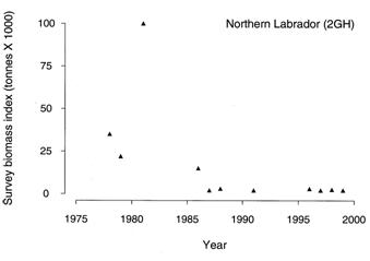 Figure 10.  Temporal variation in the estimated number of mature individuals in the Northern Labradorcod stock (NAFO Divisions 2GH)