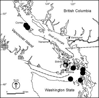 Figure 4: Copablepharon fuscum populations and sampling sites in the Strait of Georgia – Puget Sound and west coast of Vancouver Island.