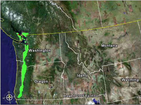 Figure 2. Breeding range of the Vesper Sparrow affinis, shown in light green; Nanaimo airport site shown as red dot. The interior subspecies of the Vesper Sparrow (P. g. confinis) breeds in grassland areas shown in the satellite image as a buff colour, separated from the coastal grasslands by high mountains (dark green and white).