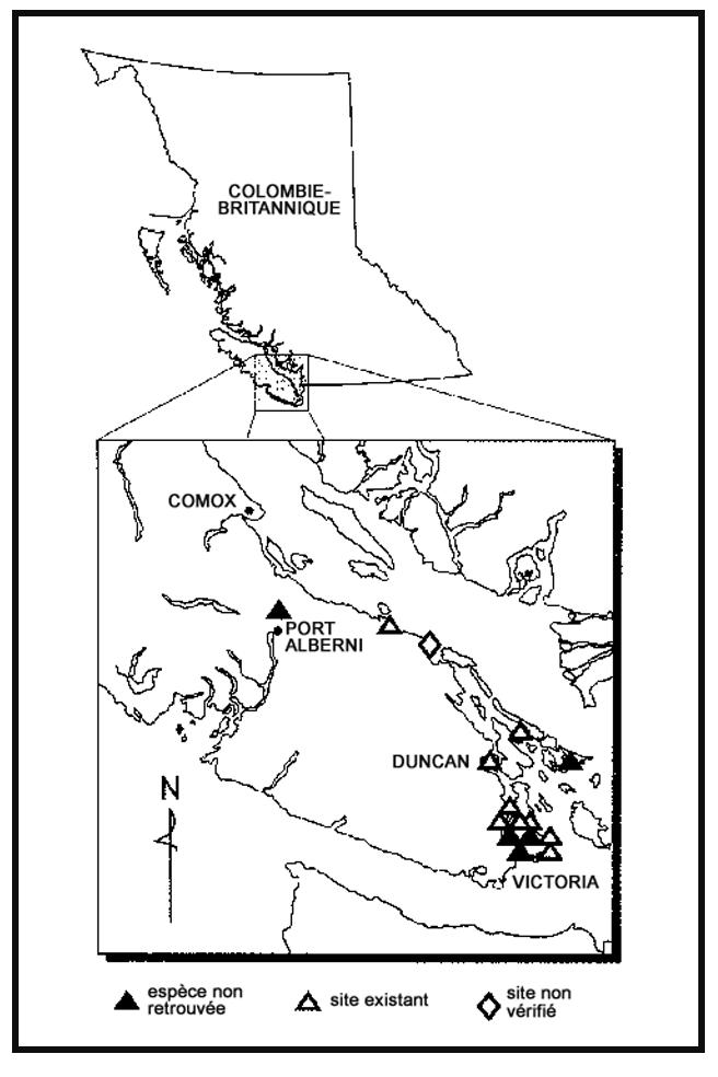 Figure 3. Aire de répartition du Meconella oregana en Colombie-Britannique.
