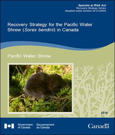 Cover Photo: Pacific Water Shrew
