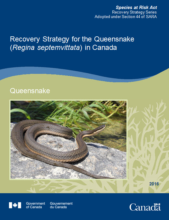 Recovery Strategy for for the Queensnake