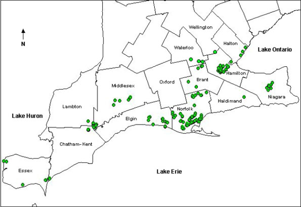 Figure 2: Distribution of Castanea dentata in Canada (Tindall et al., 2004, with additions).