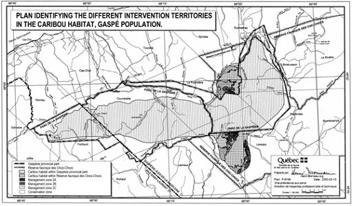 Figure 2. Plan identifying the different intervention territories in the caribou habitat, Gaspé Population