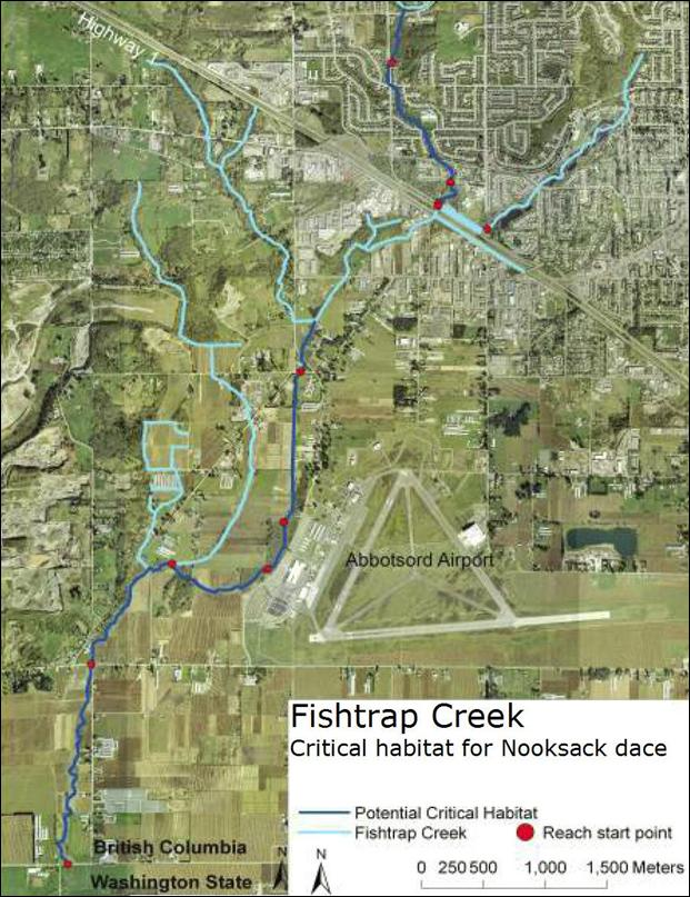 Fishtrap Creek:critical habitat for Nooksack dace