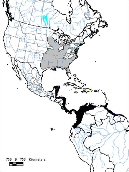 Figure 1. Global breeding (grey shading) and wintering (black shading) range of the Prothonotary Warbler (modified from Ridgely et al. 2003).
