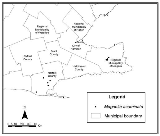 Figure 2.   Natural Distribution of Magnolia acuminata L. in Canada
