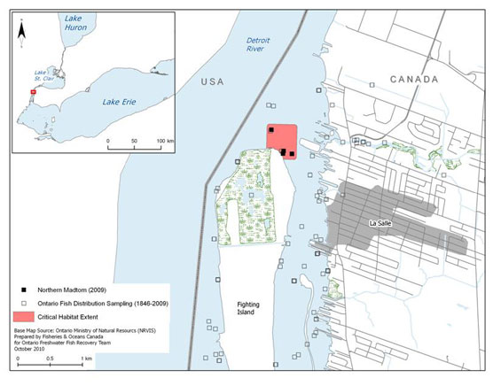 Figure 5b. Critical habitat identified for the Northern Madtom within the Detroit River near Fighting Island (See long description below)