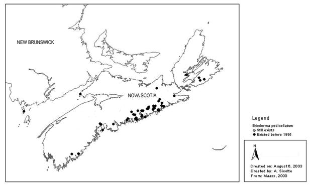 Figure 1. Distribution of the Atlantic population of boreal felt lichen prior to 1995