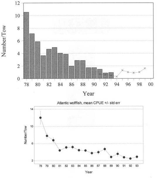 Figure 4.  Top - Bars: CPUE (Σno./Σstn in each year) for Atlantic wolffish, Anarhichas lupus, caught in tows within appropriate depth and temperature ranges, 1978-93; Line, X's - same, all stations (data provided by DFO in September 2000).  Bottom - mean CPUE ± std error for all positive tows.  Eastern Newfoundland, 1978-1993, DFO Fall Survey Data.