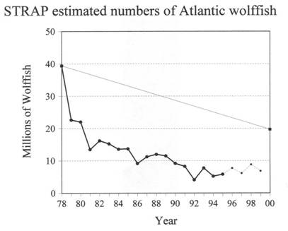 Figure 6.  Twenty years of STRAP analyses for Atlantic wolffish, Canadian waters.  Solid line, filled circles: Engels trawl estimates.  From 1978 to 1994 (16 years, i.e. about two wolffish generations) there was no change in sampling method, and the decline is 87%.  Dotted line, small dots: corrected estimates from Campelen trawls using the factor 4.85 (see p. 5), 1995-1999.  Based on information provided by DFO in September 2000.  Straight line shows the COSEWIC endangered criterion.