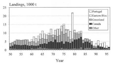 Figure 9.  History of the northwest Atlantic fishery for Atlantic wolffish, Anarhichas lupus, 1950-1996.  FAO Data.