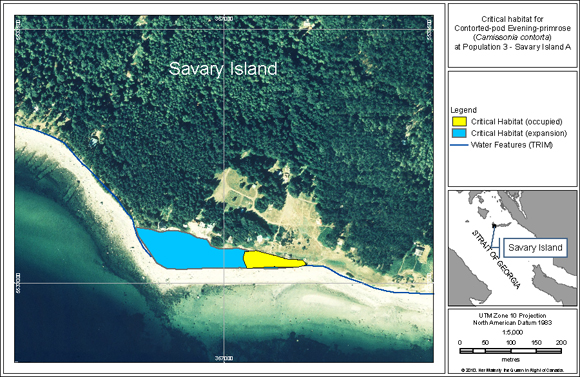 Location of critical habitat for Population 3 (Savary Island A) at The Meadow Beach on Savary Island
