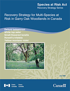 Species at Risk Act Recovery Strategy Series Recovery Strategy for Multi-Species at Risk in Garry Oak Woodlands in Canada Deltoid balsamroot White top aster Small-flowered tonella Howell's triteleia Yellow montane violet July 2006