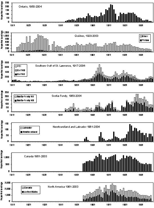 Figure 18.  Reported landings in tonnes of American eels in Ontario (Casselman 2003, updated by J.M. Casselman, OMNR), Quebec (Caron et al., submitted), Southern Gulf of St. Lawrence (D.K. Cairns, DFO), Scotia‑Fundy (R. Bradford, DFO), Newfoundland (M. O'Connell, DFO), Canada, and North America. Many factors affect landings; for specific explanations, see original sources.