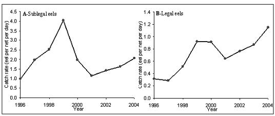 Figure 20.  CPUE of: (A) sublegal; and (B) legal American eels by commercial fyke net fishers on Prince Edward Island (1996-2004; from D.K. Cairns, DFO).