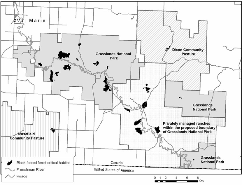 Critical habitat for the black-footed ferret in Canada (see long description below).