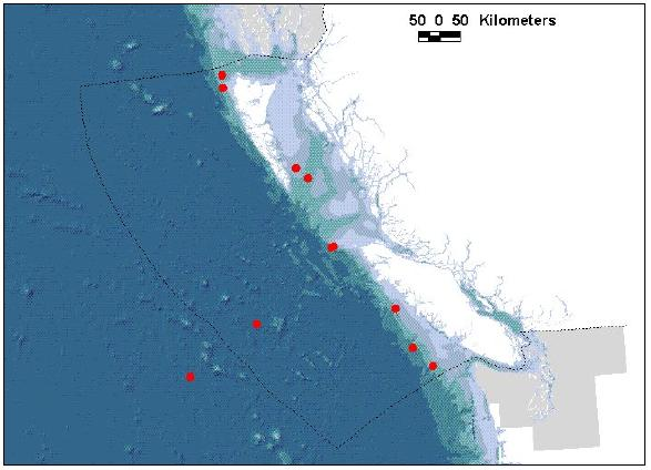 Figure 3: Canadian sightings of the Short-tailed Albatross Phoebastria albatrus since 1991. Dotted line indicates boundary of the EEZ. Light blue, grey and green shading indicates the continental shelf (200 m isobath) and slope areas.
