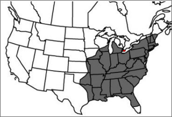 Map of North American distribution of Nodding Pogonia