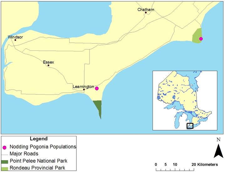 Map of distribution of Nodding Pogonia in Ontario