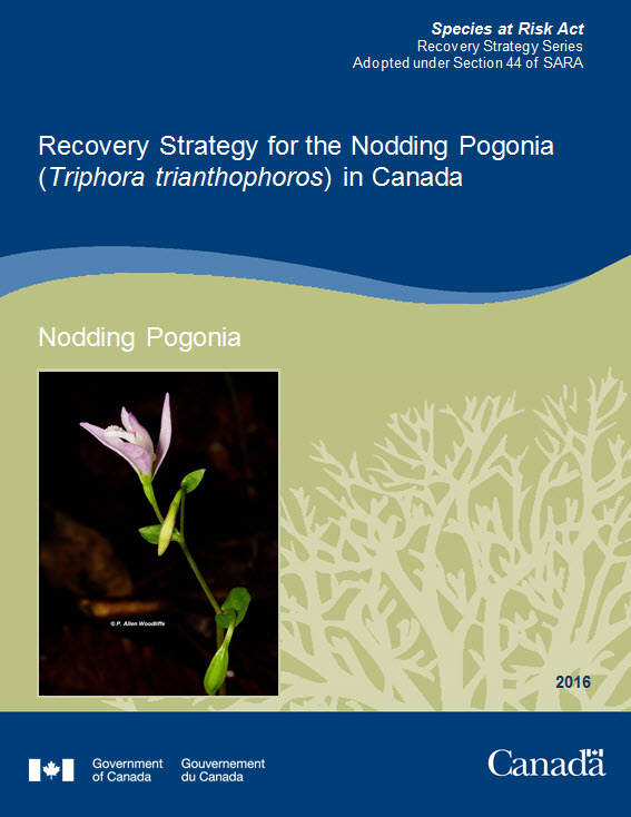 Cover photo: Recovery Strategy for the Nodding Pogonia