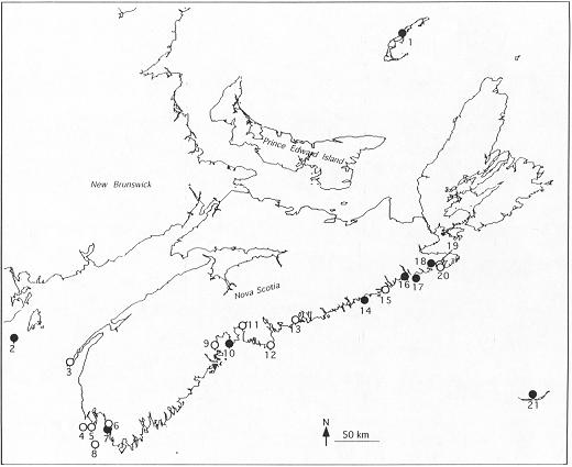Figure 1.  The locations of recent Roseate Tern colonies inCanada, including sites occupied in 1997 (filled circles) and sites occupied at least once in the 1980s or 1990s (open circles). Details, including colony names, are given in Table 3.  See Kirkham and Nettleship (1985, Fig 2) for colonies occupied prior to 1980.