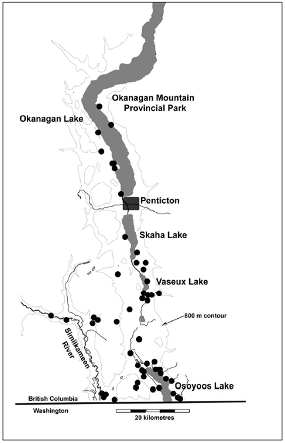 Figure 2: B.C. range of Nuttall's Cottontail from COSEWIC (2006). (See long description below)