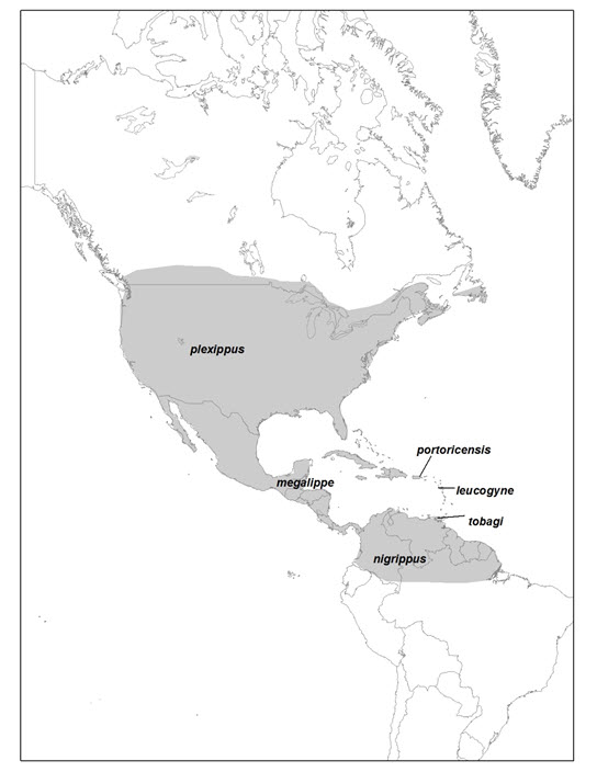 Map of North America range of Monarch (see long description below)