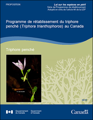 Coverture du document : Programme de rétablissement du triphore penché