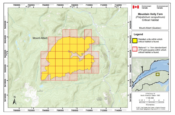 Figure 2 is a map showing Critical habitat for Mountain Holly Fernin in Quebec