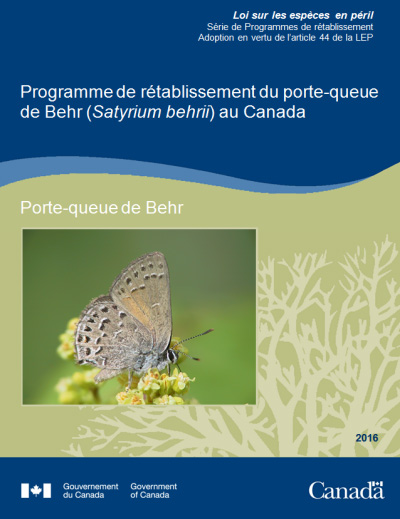 Photo de couverture pur la  Programme de rétablissement du porte queue de Behr