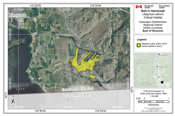 Map showing Critical habitat for Behr's Hairstreak at east Osoyoos