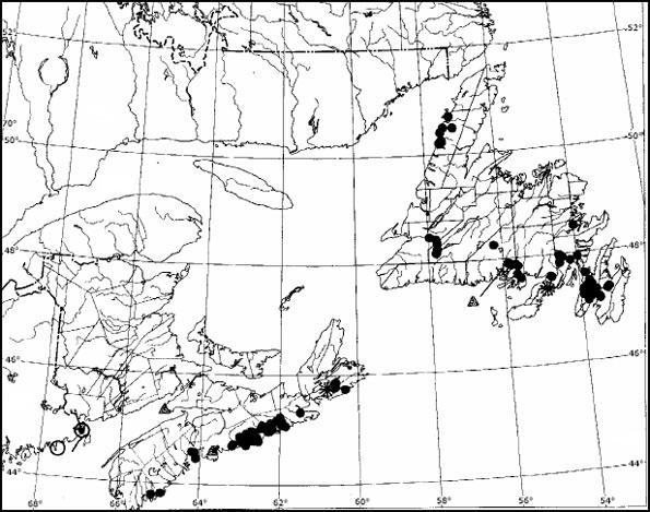 Figure 4: Distributional map for all of the occurrences of Erioderma pedicellatum in Atlantic Canada that had been known prior to 1995.