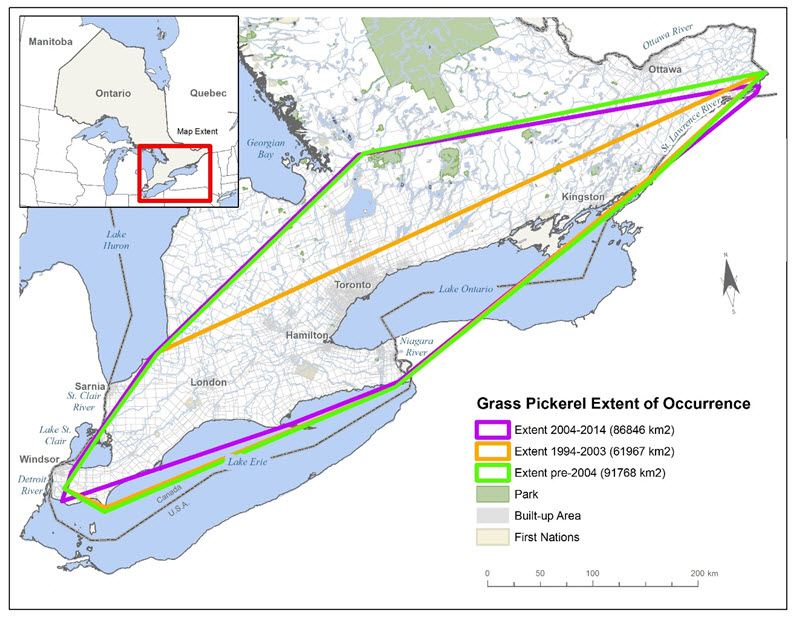 Map indicating extent of occurrence (EO) for the Grass Pickerel in Canada.