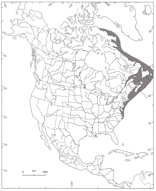 Map showing the distribution of Harbour Porpoises in Eastern Canada.