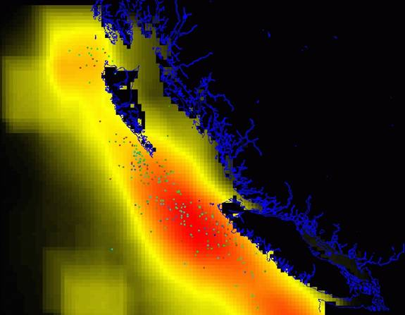 Generalized prediction of blue whale habitat showing all recorded kills (coloured dots) by British Columbia whaling stations. Predictions are shaded from high (red) through yellow to low (black) (DFO-CRP, unpubl. data).