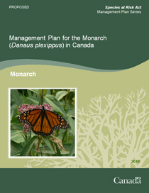 Cover Photo of Management Plan for the Monarch (Danaus plexippus) in Canada – 2014 [Proposed]