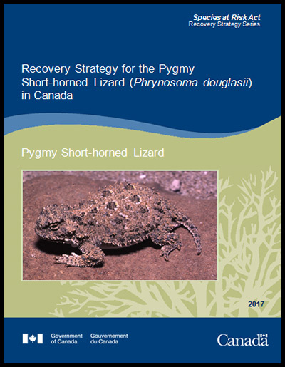 Recovery Strategy for the Pygmy Short horned Lizard
